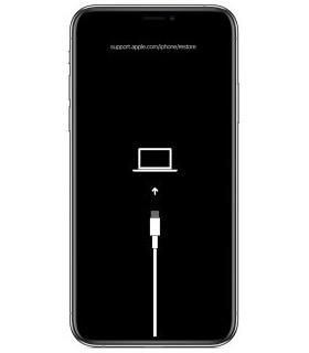 Erreur Logiciel iPhone XI RNL