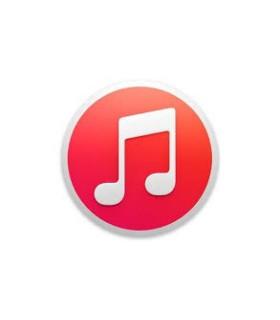 Erreur Logiciel iPhone 6s+ RNL