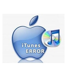 Erreur Logiciel iPad mini 2 RNL