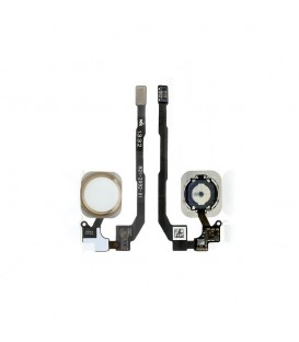 Nappe bouton Home et bouton home avec Touch ID pour iPhone 5S